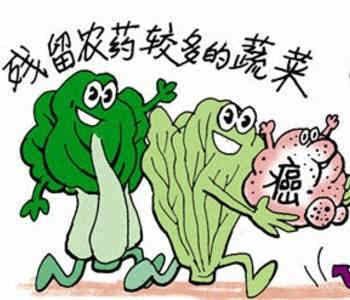 农药残留检测仪可以检测茶叶农药残留吗?