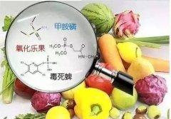 农药残留严重危害到人类的身体健康-农药残留检测仪